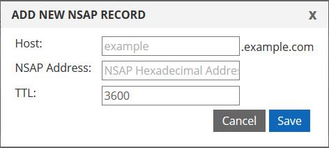 NSAP DNS record
