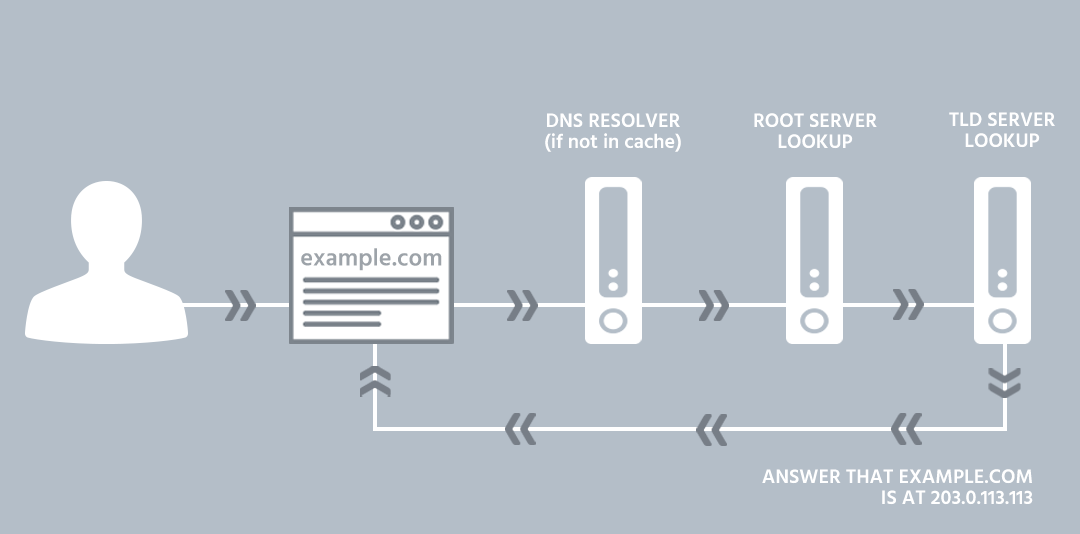How does a DNS query work? | Total Uptime®